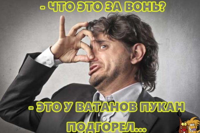 """От вчерашних событий в Золотом у коллаборанов знатно """"подгорело""""!"""