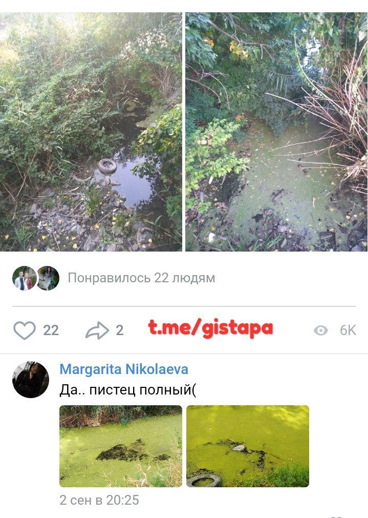 Экология лыныры в картинках